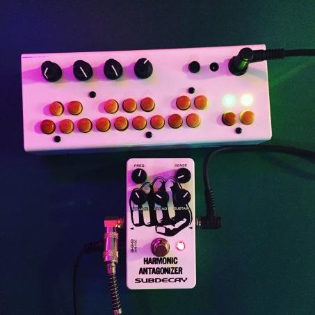 Critter and Guitari Bolsa Bass with Subdecay Harmonic Antagonizer pedal