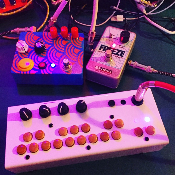 Critter and Guitari Bolsa Bass, with digdugDIY Oceans Reverb pedal